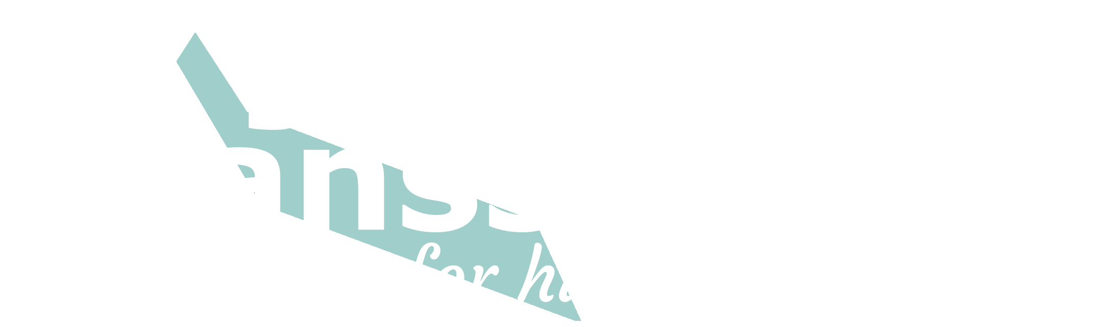 James Jansson Team for NSW Upper House Election